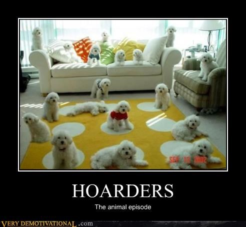 HOARDERS The animal episode