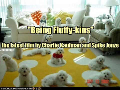"the latest film by Charlie Kaufman and Spike Jonze ""Being Fluffy-kins"""