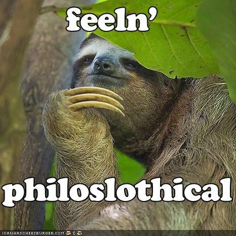 best of the week I Can Has Cheezburger philosophical philosophy puns sloth thinking - 4541626880