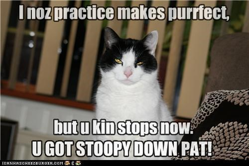 I noz practice makes purrfect, U GOT STOOPY DOWN PAT! but u kin stops now.