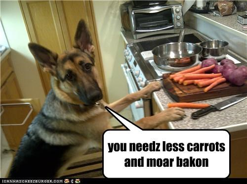 bacon,carrot,carrots,cooking,german shepherd,Hall of Fame,ingredients,less,more,need,suggestion