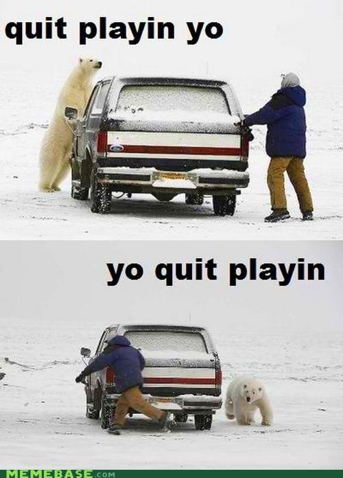 hide and seek playtime polar bear snow truck - 4542365184