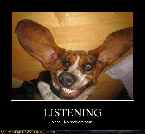 LISTENING Nope. No problem here.