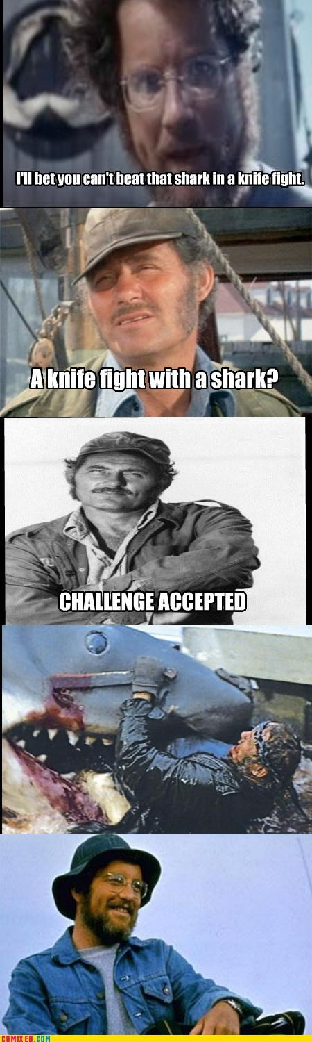 jaws,knife,nature,never bring a knife to a shark fight,sad but true,shark
