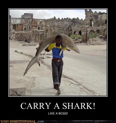 CARRY A SHARK! LIKE A BOSS!