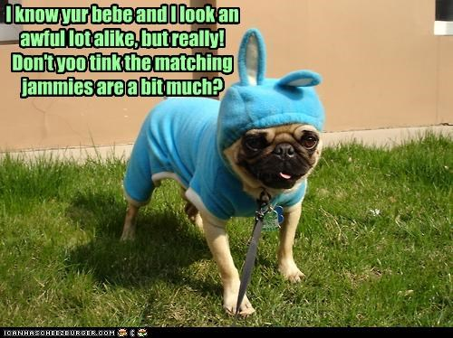 baby,do not want,dressed up,frustrated,matching,pajamas,pug,resemblance,upset