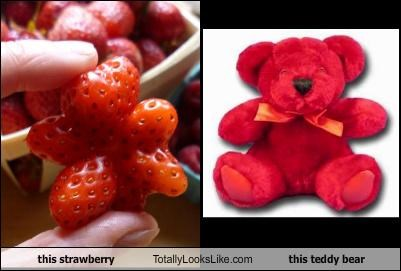 food fruit strawberry teddy bear - 4542966784