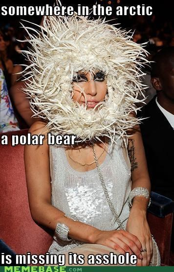 bunghole lady gaga polar bear - 4543001088