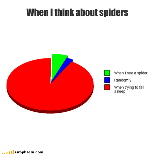 arachnids,fear,Pie Chart,randomly,sleeping,spiders,study