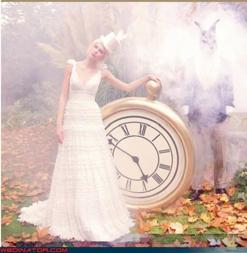 alice in wonderland bridal fashion funny wedding photos wedding dress - 4543195904