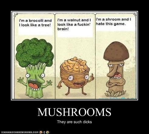 MUSHROOMS They are such dicks