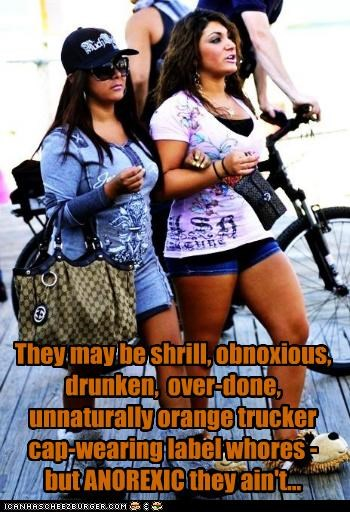 They may be shrill, obnoxious, drunken, over-done, unnaturally orange trucker cap-wearing label whores - but ANOREXIC they ain't...