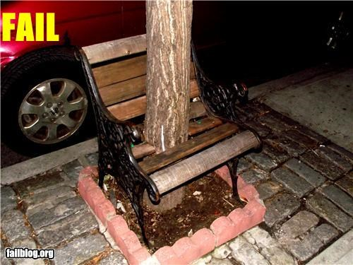 bench,failboat,g rated,poor planning,tree,unusable