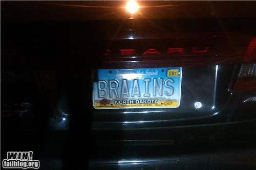 cars,horror,license plate,nerdgasm,zombie