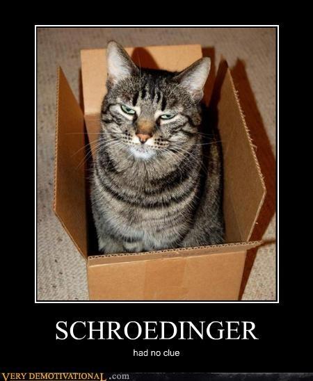 box cat science - 4544367872