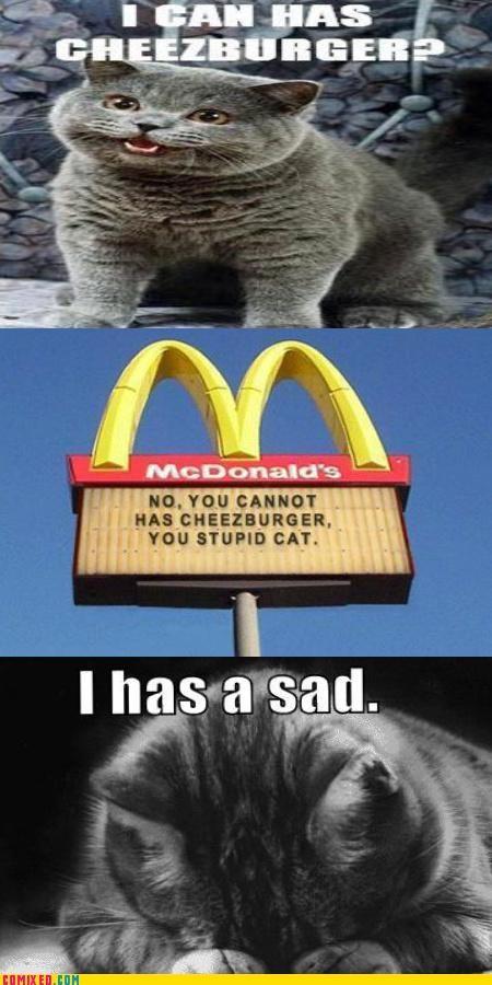Caturday happy cat I Can Has Cheezburger McDonald's Sad sad but true - 4544982016