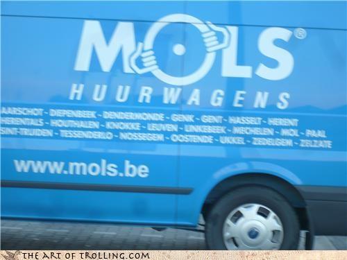 belgium,goatse,holes,IRL,mols,truck