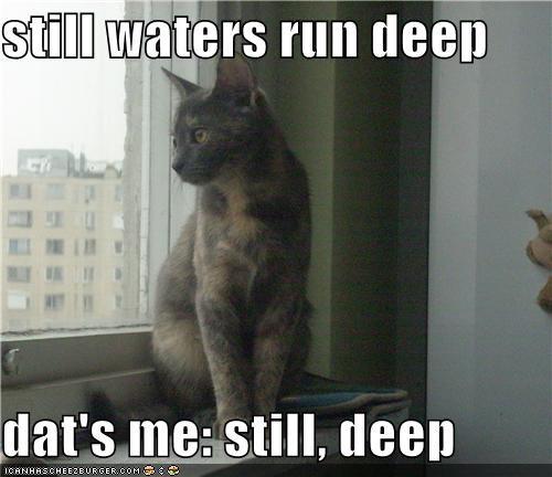 still waters run deep  dat's me: still, deep