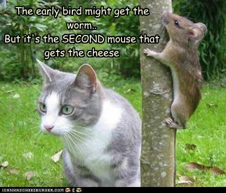 The early bird might get the worm.. But it's the SECOND mouse that gets the cheese