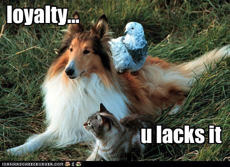 loyalty... u lacks it