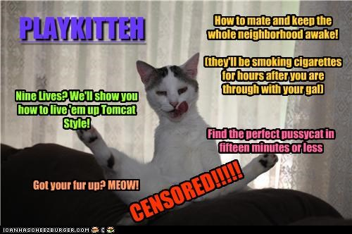 CENSORED!!!!! PLAYKITTEH How to mate and keep the whole neighborhood awake! (they'll be smoking cigarettes for hours after you are through with your gal) Nine Lives? We'll show you how to live 'em up Tomcat Style! Find the perfect pussycat in fifteen minutes or less Got your fur up? MEOW!