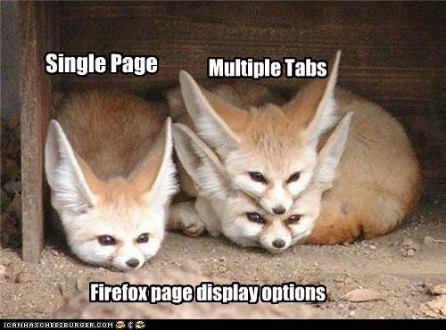 best of the week browser caption captioned display fennec fox fennec foxes firefox internet multiple options page single tabs - 4550404608