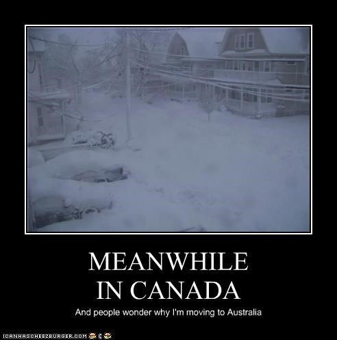 MEANWHILE IN CANADA And people wonder why I'm moving to Australia