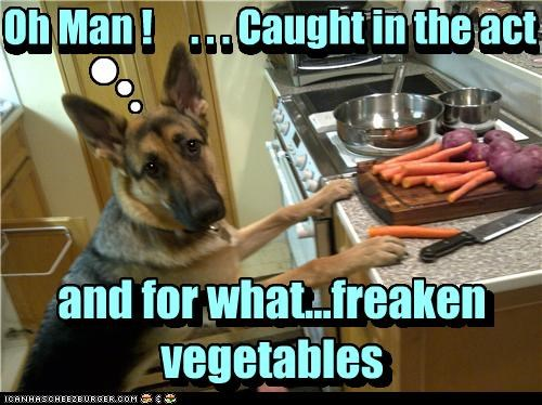 . . Oh Man ! . . . Caught in the act and for what...freaken vegetables Oh Man ! . . . Caught in the act and for what...freaken vegetables n n n