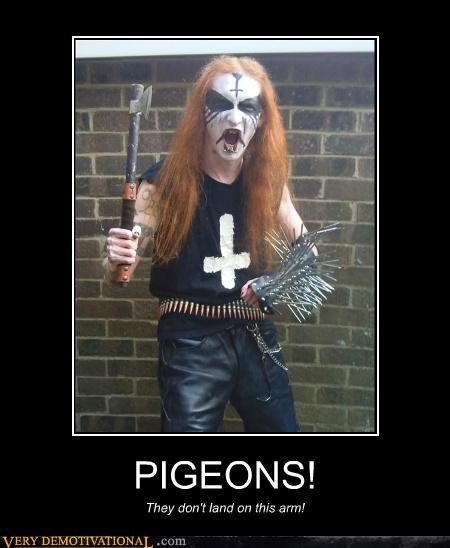black metal,pigeons,spikes