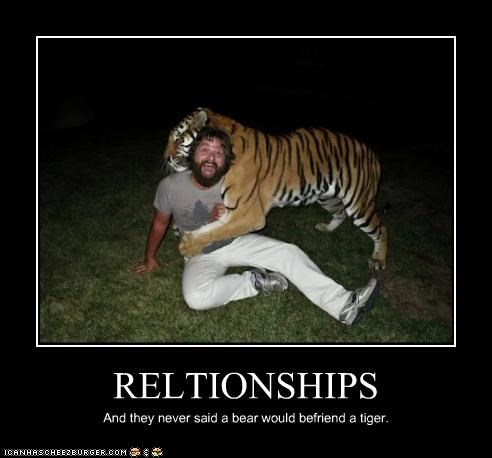 RELTIONSHIPS And they never said a bear would befriend a tiger.