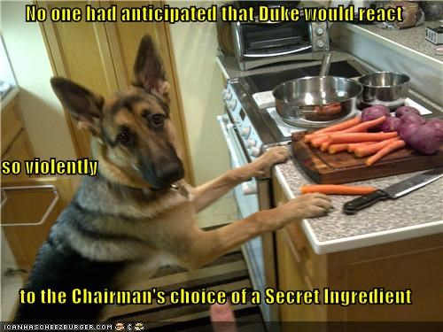 Cheezburger Image 4551899136