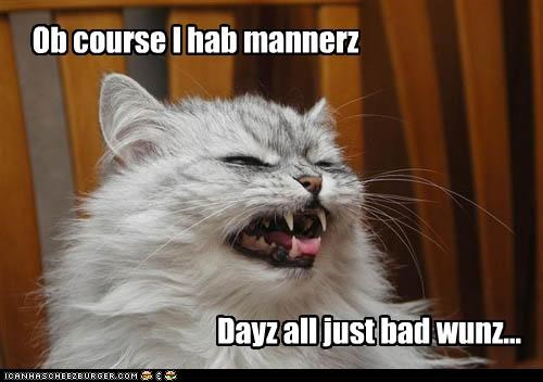 bad caption captioned cat clarification clarifying manners of course