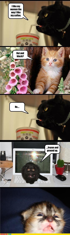 Cats Caturday coffee wtf - 4552997888
