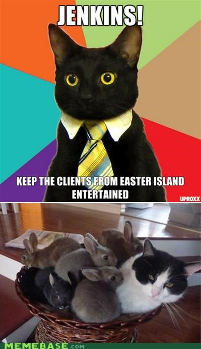 bunnies,Business Cat,easter,easter island,lol