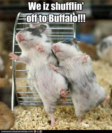 We iz shufflin' off to Buffalo!!!