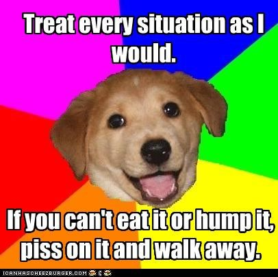 advice dog,eat it,hump it,piss on it,walk away