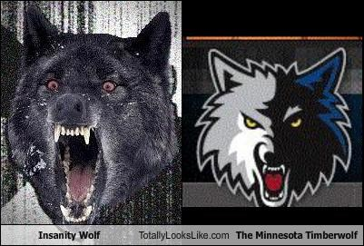 animals Insanity Wolf Minnesota minnesota timberwolf sports wolves - 4553867264