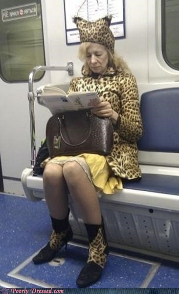 furries furry grandma leopard Subway - 4554040832