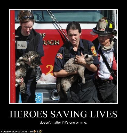 animals Cats fire firefighters heroes lolcats save - 4554246912