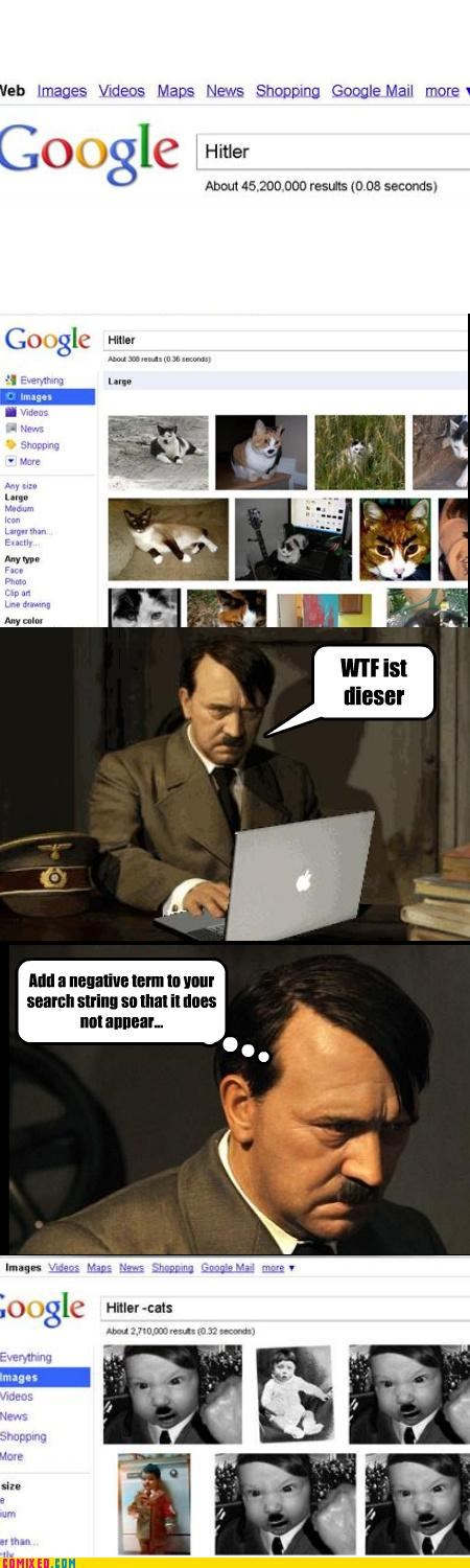 Babies,Cats,google,google image search,history,hitler,wtf