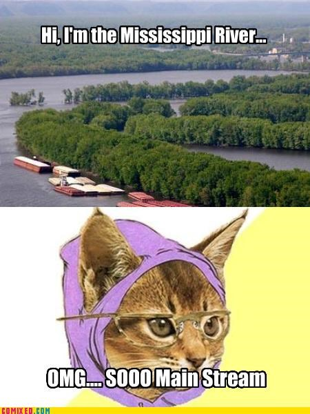 Caturday,Hipster Kitty,mainstream,Mississippi River,puns