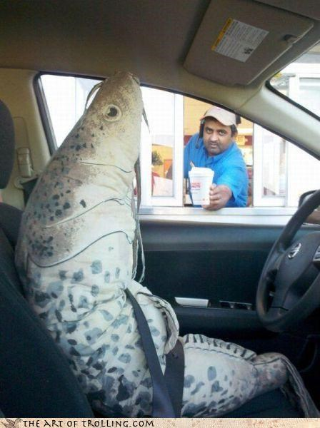 car carp crap drive thru driving fish food IRL restaurant - 4555630848
