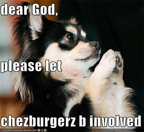 Cheezburger Image 4556883968