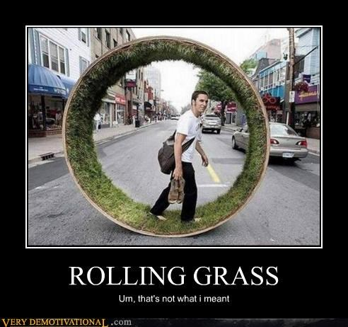 ROLLING GRASS Um, that's not what i meant