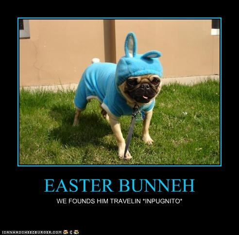 EASTER BUNNEH WE FOUNDS HIM TRAVELIN *INPUGNITO*