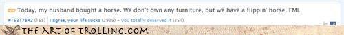 fml furniture i own a horse website - 4557334016