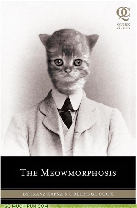 cat cockroach coleridge cook Franz Kafka funny meow parody rewrite The Meowmorphosis the metamorphosis wtf - 4557551360