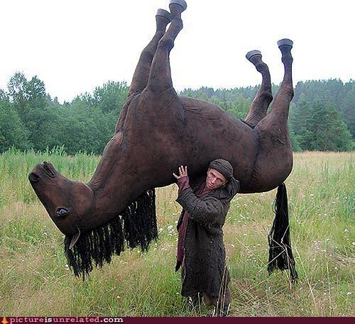 art horse statue wtf - 4557605120