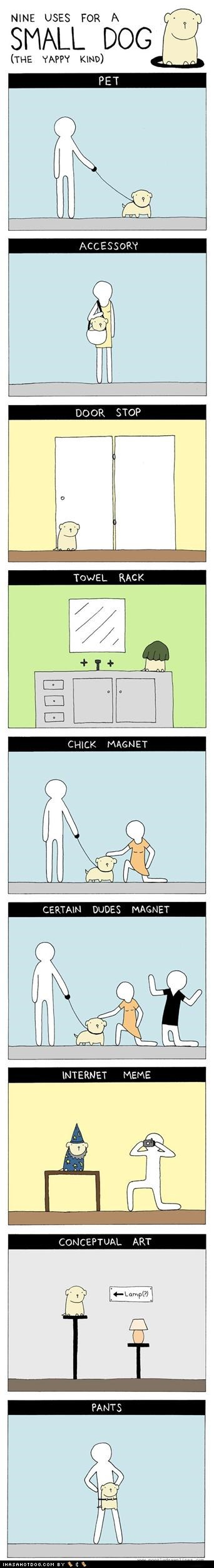 accessory,certain dudes magnet,chick magnet,comic,conceptual art,dogs,door stop,Hall of Fame,ideas,meme,memedogs,nine,pants,pet,small,towel rack,uses