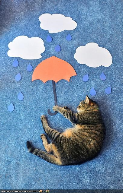 art,carpet,cyoot kitteh of teh day,paper,rain,umbrella,weather